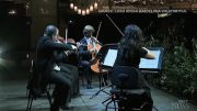 A string quartet performed for an audience of 2,292 plants in Barcelona, amid ongoing restrictions 4