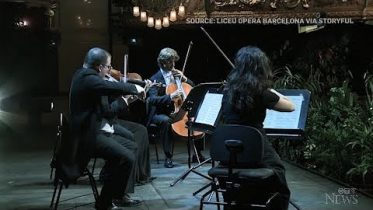 A string quartet performed for an audience of 2,292 plants in Barcelona,  amid ongoing restrictions 6