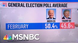 Trump Trailing Joe Biden In String Of New State And National Polls | MSNBC 4