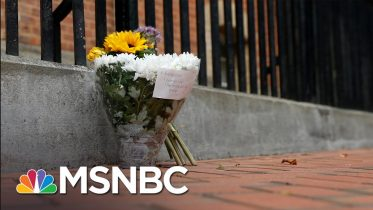 The Horrors of 2020 | MSNBC 6