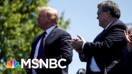 Why Trump Just Fired The One Prosecutor He Fears More Than Mueller | MSNBC 2