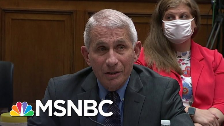 Dr. Fauci Testifies That No One Told Virus Task Force To Do Less Testing   Andrea Mitchell   MSNBC 1