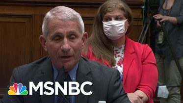 Fauci Testifies On Coronavirus: 'Deaths Always Lag' Behind Cases | MSNBC 6
