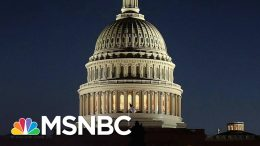 Maya Wiley: Dems Must Worry About The Constitution, Not Elections | The 11th Hour | MSNBC 8