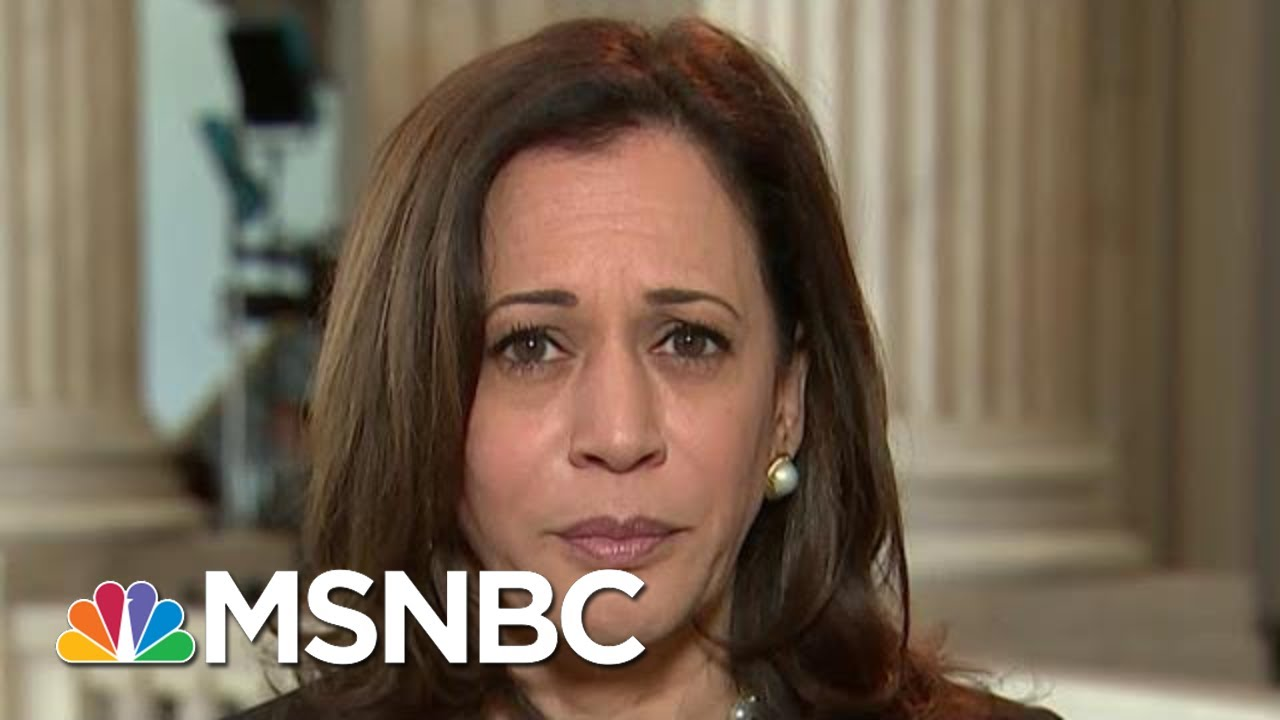 Sen. Harris: We Must Disband The 'Two Systems Of Justice In America'   Hallie Jackson   MSNBC 1