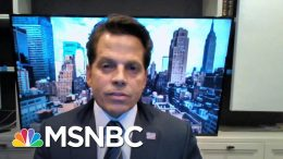 Anthony Scaramucci: Trump Making A 'More Racist' Pitch For 2020 | MSNBC 9