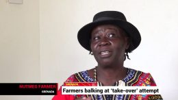 Grenada's farmers worry about industry take-over 4