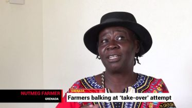 Grenada's farmers worry about industry take-over 6