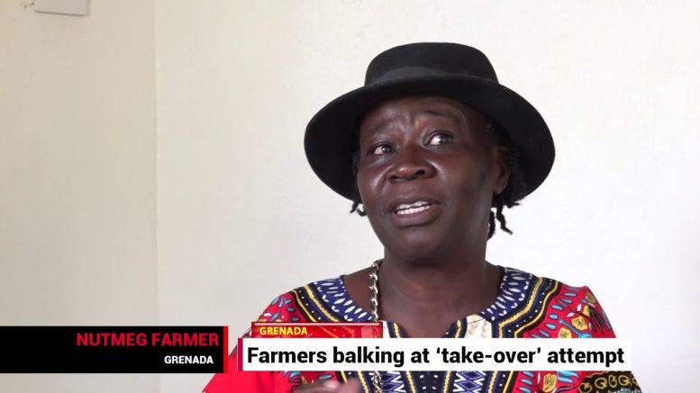 Grenada's farmers worry about industry take-over 1