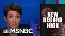 Trump Admin Failure On Coronavirus Threatens Unity Of The States | Rachel Maddow | MSNBC 4