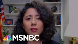 Counties Struggle With Consequences Of Rash Texas Reopening | Rachel Maddow | MSNBC 3
