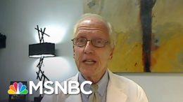 CDC Adviser: 'It's A Lot Easier To Wear A Mask Than A Ventilator' | Deadline | MSNBC 3