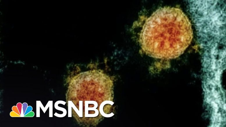 Health Officials: Worst Is Yet To Come With COVID-19 Outbreak | The 11th Hour | MSNBC 1