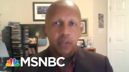 Bryan Stevenson: I Don't Believe We Would Win Brown V. Board Of Education Today | All In | MSNBC 7