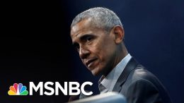 Rebuking Trump, Obama And Mattis Speak In Favor Of Protests | The 11th Hour | MSNBC 9