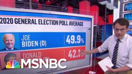 New Polls Put Trump In A Perilous Political Position | MSNBC 9