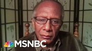 Harvard Prof. Says 'Bright Side' And 'Dark Side' Of America Are On Display | The Last Word | MSNBC 3