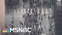 Frank Figliuzzi On Trump: He Relishes The Idea That People Are Appalled | Deadline | MSNBC 1