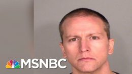Derek Chauvin's Bail Set At $1.25M In First Court Appearance In George Floyd Death | MSNBC 4