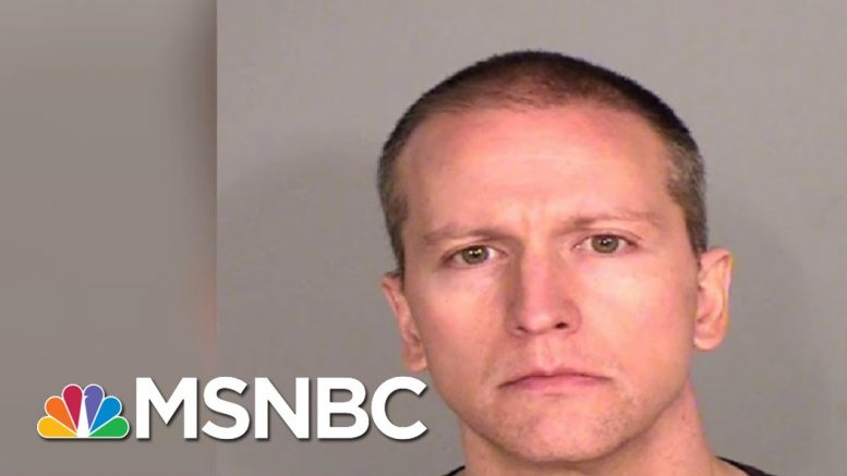 Derek Chauvin's Bail Set At $1.25M In First Court Appearance In George Floyd Death | MSNBC 1