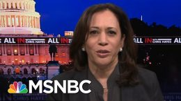 Kamala Harris Says Police Reform Bill Is All About 'Accountability And Consequence' | All In | MSNBC 6