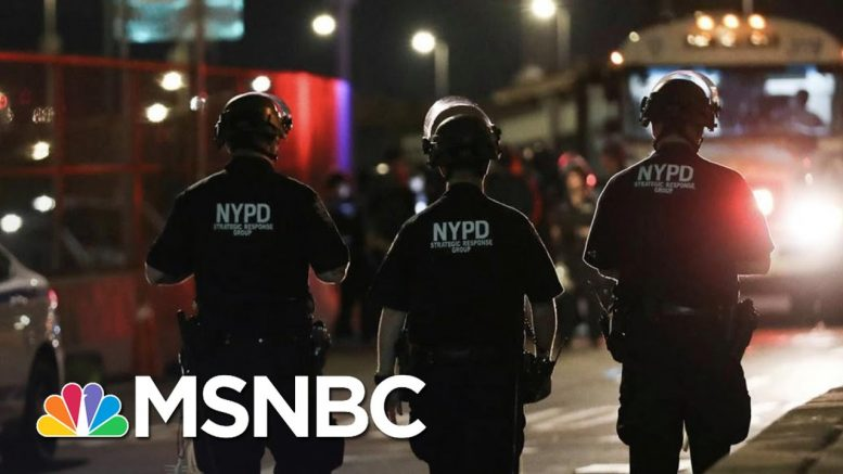Maya Wiley Explains What It Means To 'Defund The Police' | The 11th Hour | MSNBC 1