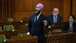 "NDP Leader Jagmeet Singh ""frustrated"" by failed CERB negotiations 8"