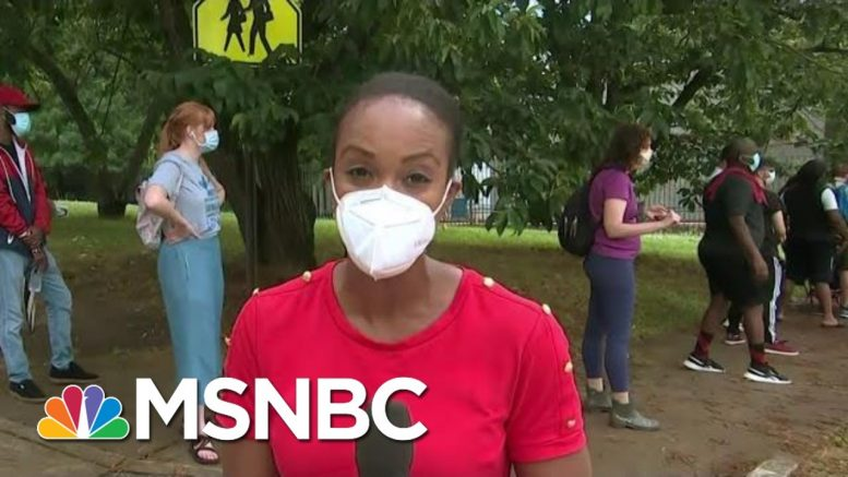 Long Lines, Faulty Machines In Minority Areas On Primary Day In Georgia | MTP Daily | MSNBC 1