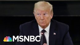 Nicolle Wallace Describes The 'Surreal State' Of The 2020 Race | Deadline | MSNBC 3