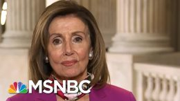 Speaker Pelosi Says Trump's Executive Order Fell 'Sadly And Seriously Short' | Deadline | MSNBC 8