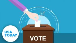 How polls work: The science behind gathering voter opinions | Just The FAQs 8