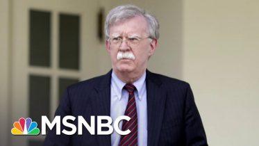Michael Steele Isn't Rushing To Buy Bolton's Book   Deadline   MSNBC 6