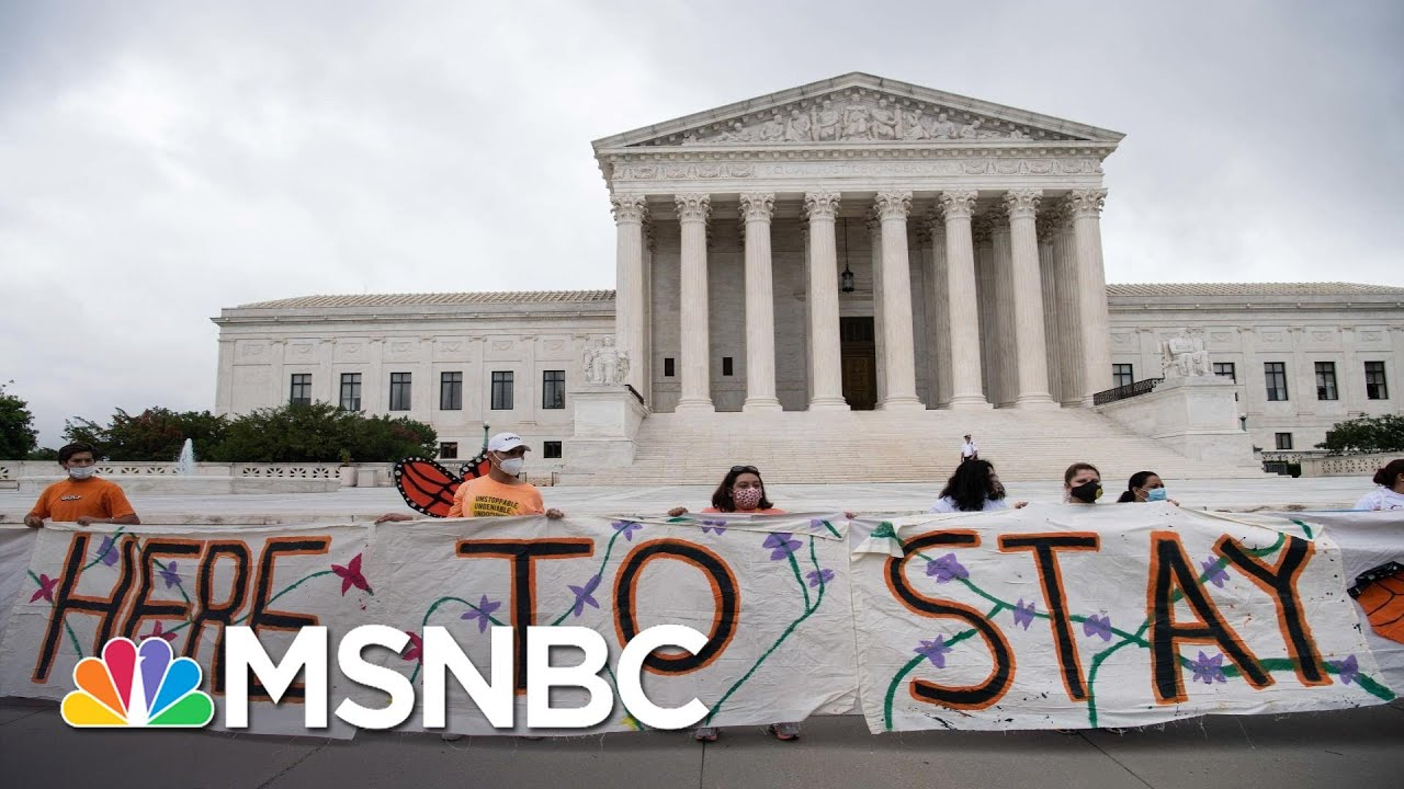DACA Lawyer Says SCOTUS Decision Proves Rule Of Law Still Exists, Despite Trump | All In | MSNBC 7