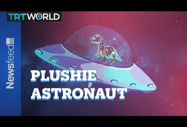 Tremor, the plushie astronaut 1