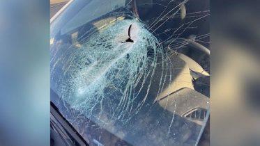 Man needs facial surgery after debris hits windshield 6