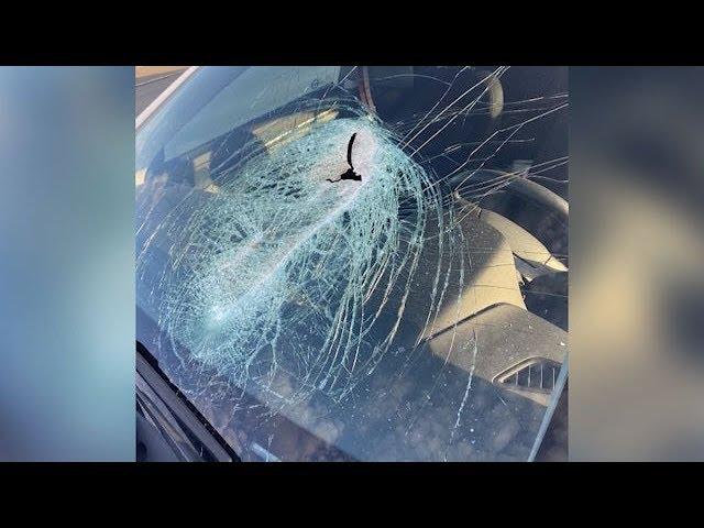 Man needs facial surgery after debris hits windshield 3