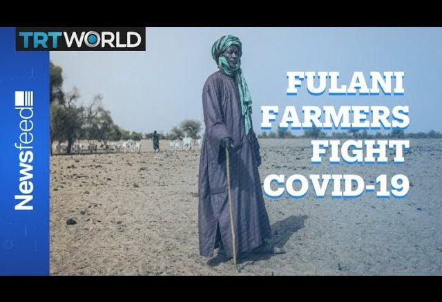 Coronavirus threatens a traditional African way of life 1