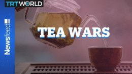 Who makes tea better? Brits or Americans? 8