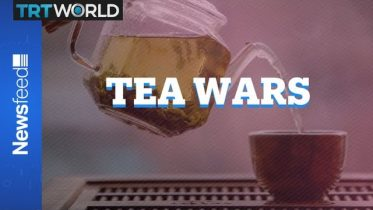 Who makes tea better? Brits or Americans? 10