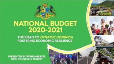 National Budget Debate 2020-2021 6