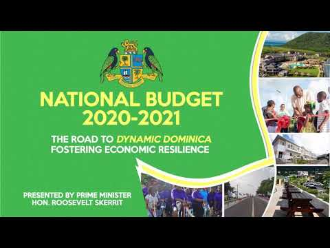 National Budget Debate 2020-2021 1