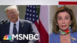 Speaker Pelosi: 'The President Himself Is A Hoax' | Stephanie Ruhle | MSNBC 1
