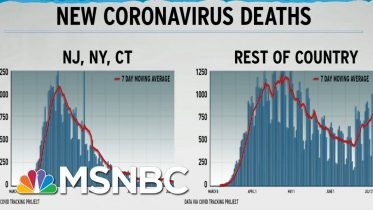 Dire U.S. COVID-19 Death Rate Seen In Graph Excluding NY, NJ, CT | Rachel Maddow | MSNBC 6