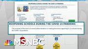 White House Hijacks CDC Guidelines For School Reopenings | Rachel Maddow | MSNBC 2