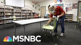 Pandemic Expert: U.S. Schools Aren't Ready To Open Due To COVID-19 | The 11th Hour | MSNBC 6