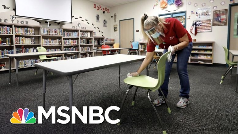 Pandemic Expert: U.S. Schools Aren't Ready To Open Due To COVID-19 | The 11th Hour | MSNBC 1