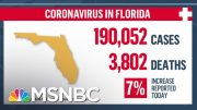 'Shattered The Previous Record': Florida Records More Than 11,000 Coronavirus Cases In One Day 2