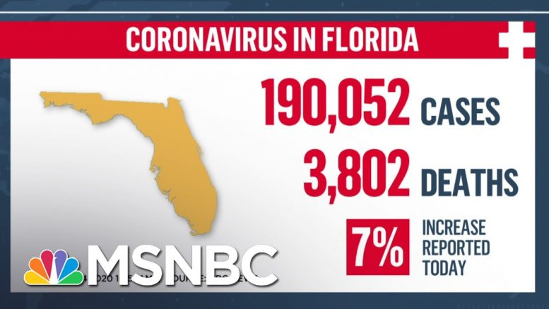 'Shattered The Previous Record': Florida Records More Than 11,000 Coronavirus Cases In One Day 1