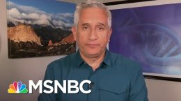 Dr. John Torres Fact Checks Trump's Claim About 'Harmless' Virus Cases | Andrea Mitchell | MSNBC 5