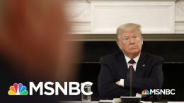 Trump Administration Gives Formal Notice Of Withdrawal From WHO   MSNBC 8